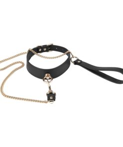 Black Collar With Golden Chain